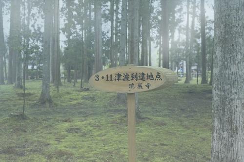 R0030830_01.JPG